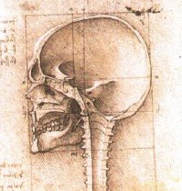A view of a skull, drawn by Leonardo da Vinci. Source [url=http://commons.wikimedia.org/wiki/File:View_of_a_Skull_III.jpg]Wikimedia Commons[/url]